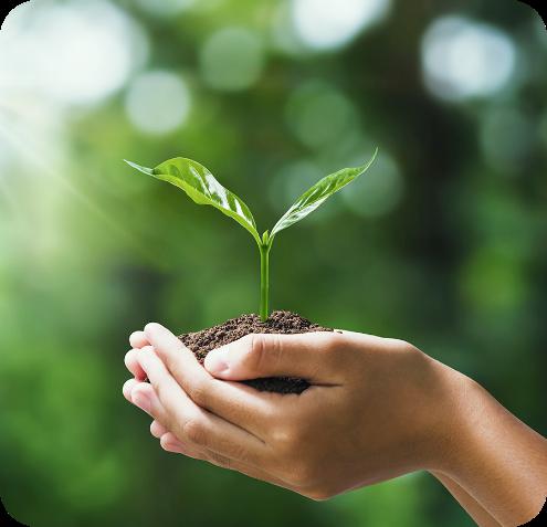 página sustentabilidade